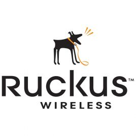 Ruckus Networks Power Adapter